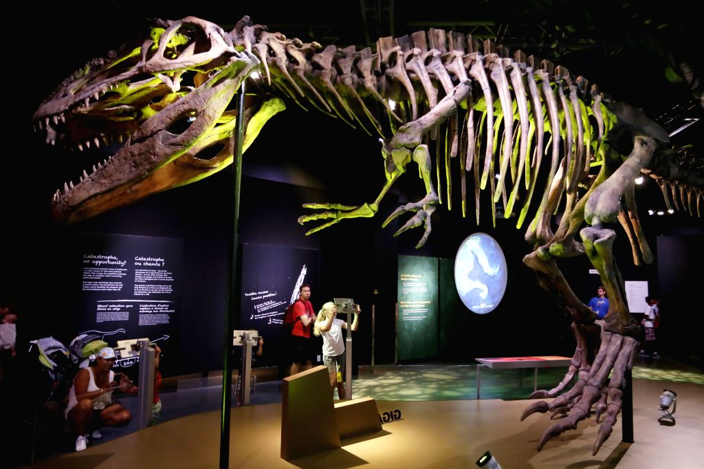 People visit the dinosaurs exhibition at the Science World museium in Vancouver, Canada, June 18, 2015.