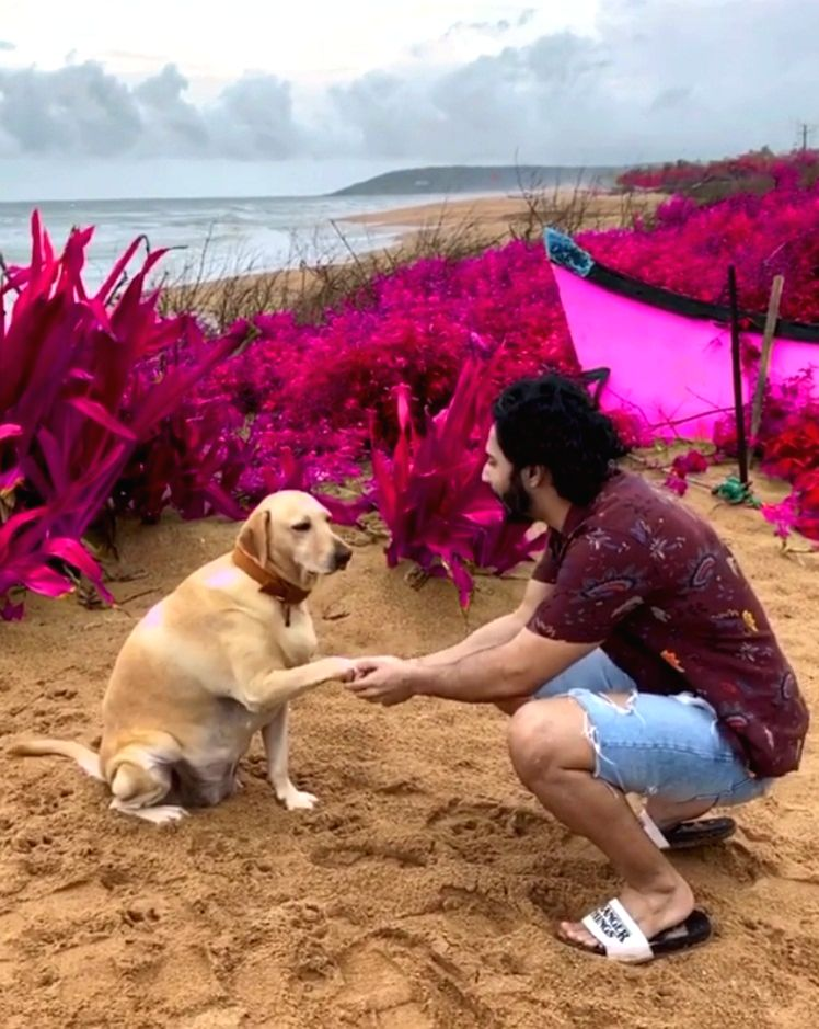 Varun Dhawan spends Sunday morning with furry friend.