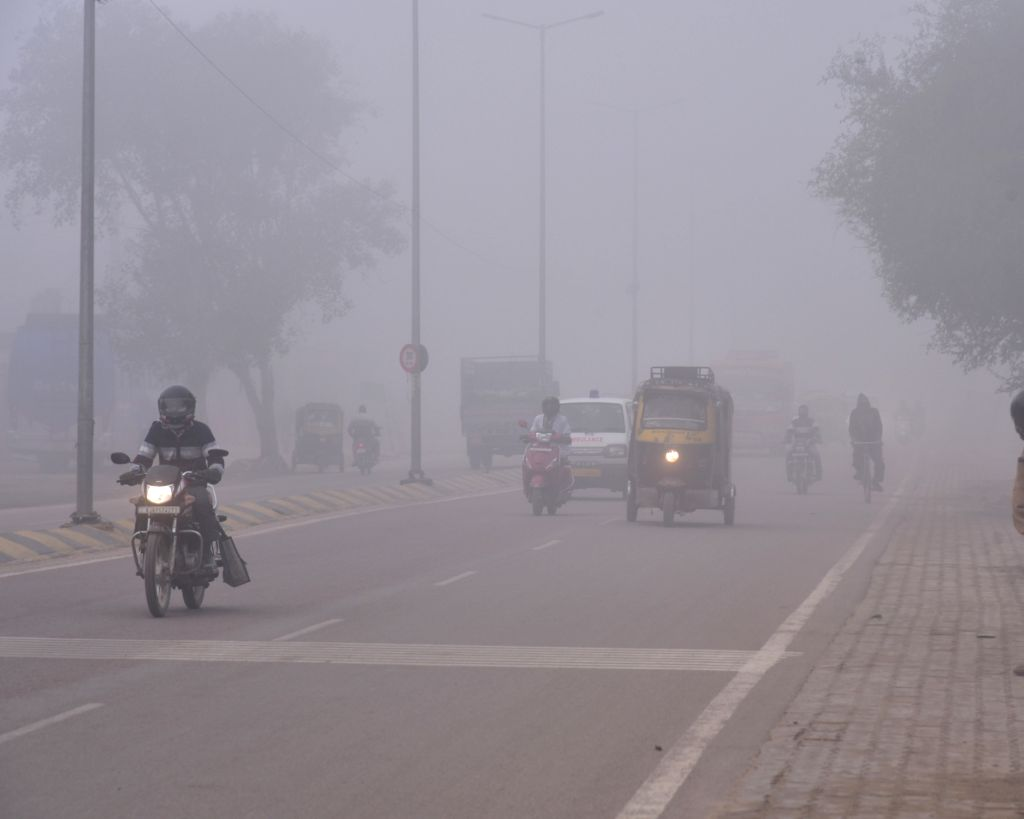 Vehicles ply on a Bikaner road on a foggy winter morning, on Jan 23, 2019.
