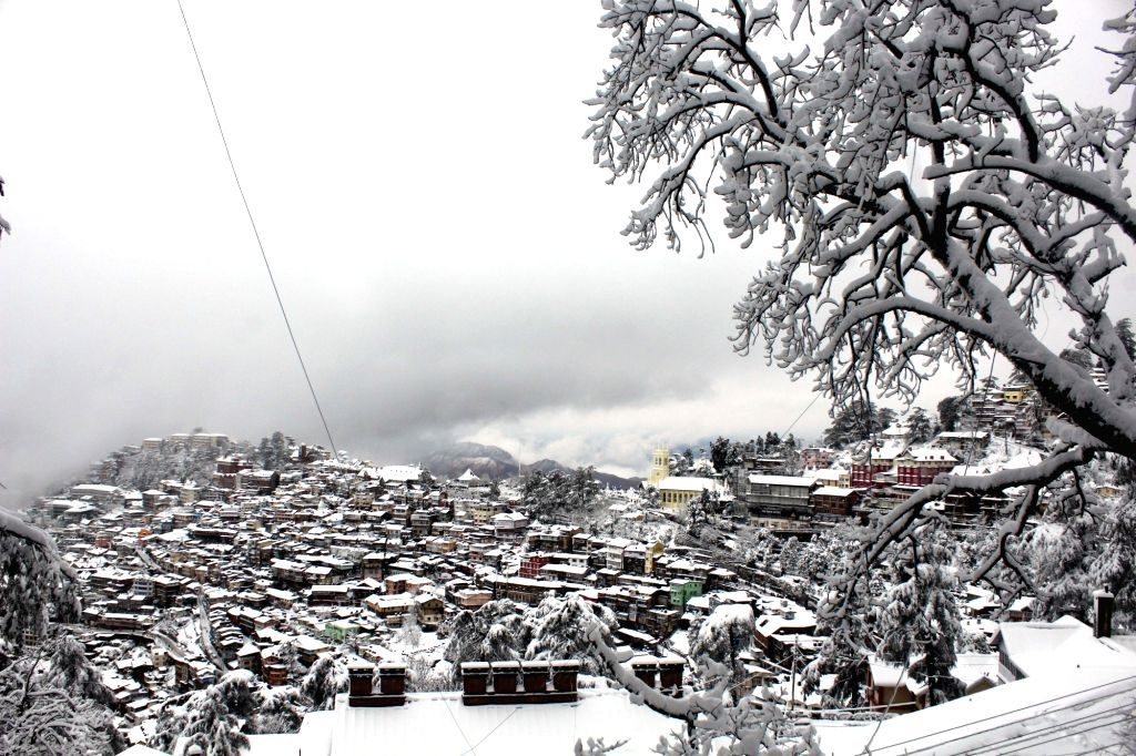 Vehicles ply on a snow-covered road during heavy snowfall in Shimla, on Jan 22, 2019.