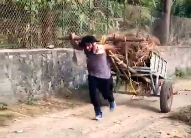 Vidyut Jammwal uses 'raw animal strength' to pull a bullock cart.