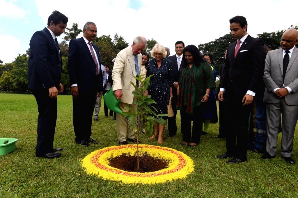 Visiting British royals Prince Charles and Princess Camilla plant a champa sapling at Soukya wellness centre in Bengaluru on Nov 16, 2019.