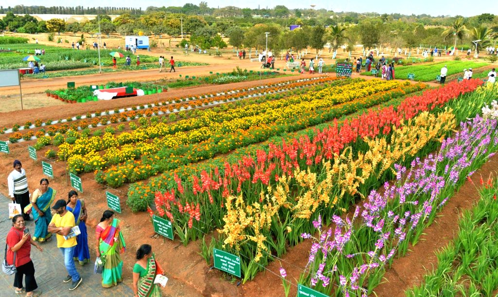 Visitors at the National Horticulture Fair 2020 organised by Indian Institute of Horticultural Research, in Bengaluru on Feb 6, 2020.