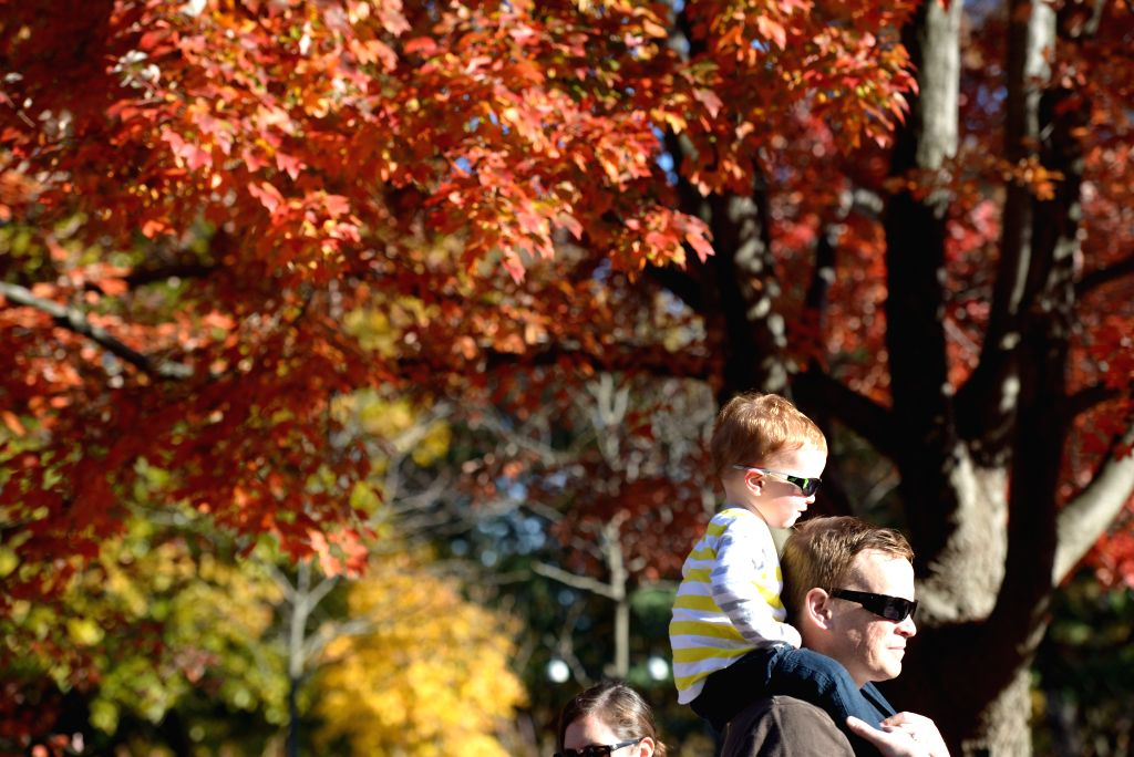 Washington D.C. (US): Visitors enjoy the fall foliage and nice weather at the Smithsonian National Zoological Park in Washington D.C., the United States, Nov. 11, 2014.
