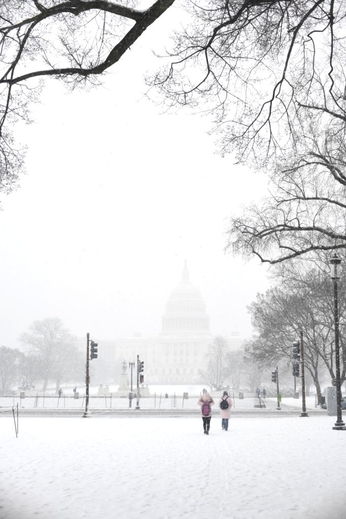 WASHINGTON, Feb. 20, 2019 - The Capitol Hill is seen in snow in Washington D.C., the United States, on Feb. 20, 2019.