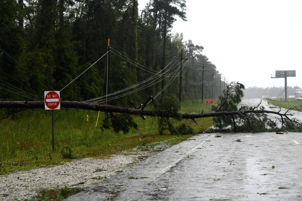 WASHINGTON, Sept. 15, 2018 - A fallen tree lies on the side of a road near coastline, in North Carolina, the United States, on Sept. 14, 2018. At least five people have been killed so far in the ...