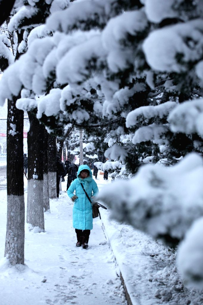 A woman walks in snow in Weihai City, east China's Shandong Province, Dec. 5, 2014. A snowfall hit the coastal city in recent days.