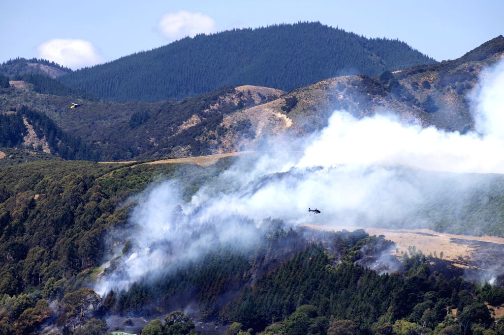 WELLINGTON, Feb. 9, 2019 - Helicopters extinguish a fire near Nelson of South Island, New Zealand, Feb. 8, 2019. A medium-scale adverse event has been declared for Tasman district, unlocking further ... - Damien O
