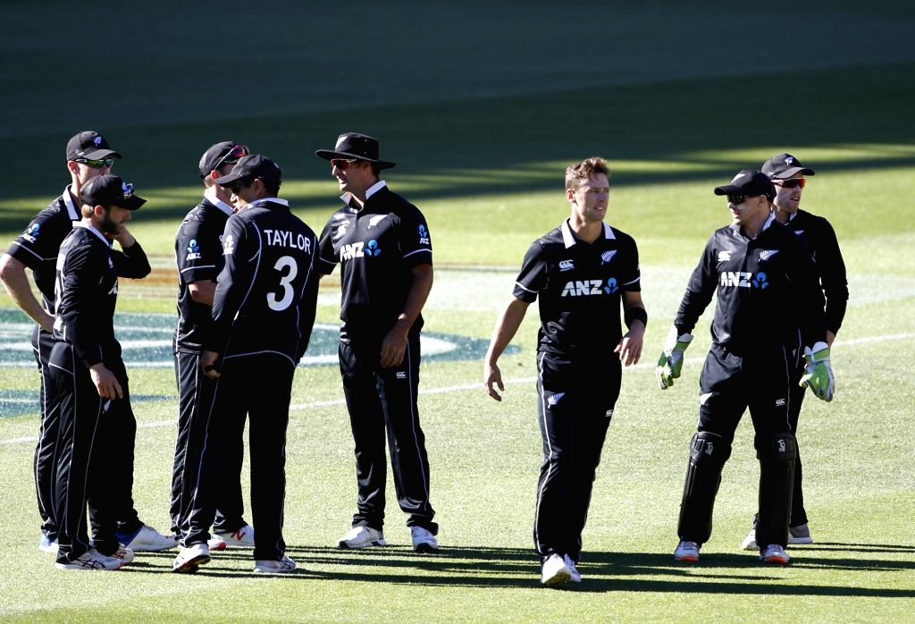 Wellington (New Zealand): New Zealand players celebrate the wicket of Ambati Rayudu during the fifth ODI match between India and New Zealand at Westpac Stadium in Wellington, New Zealand on Feb 3, ...