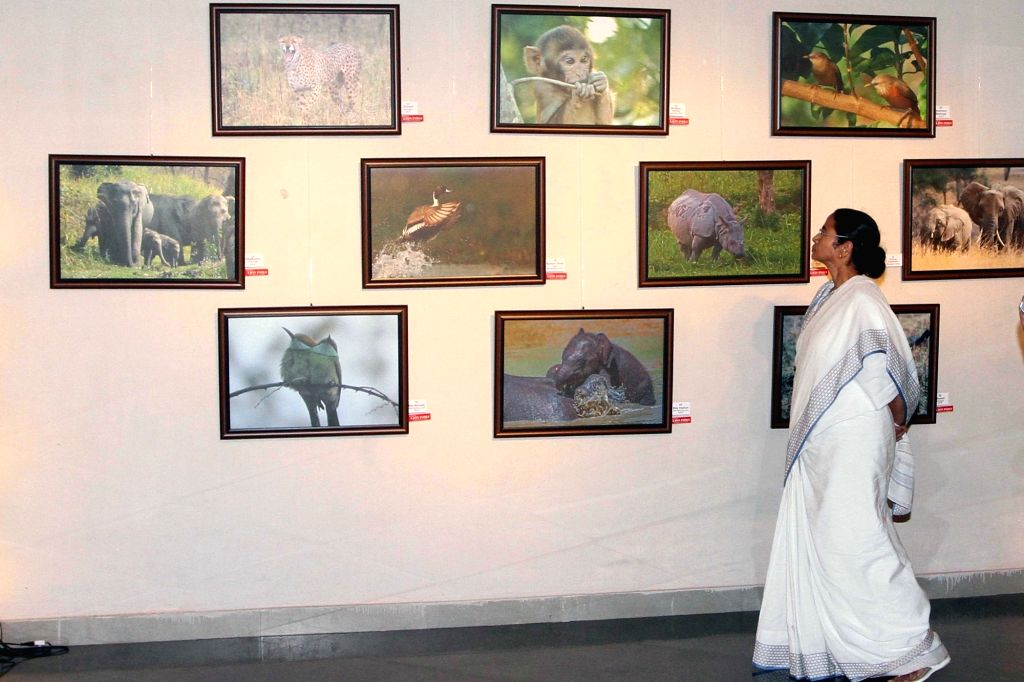 West Bengal Chief Minister Mamata Banerjee during inauguration of actor Sabyasachi Chakrabarty's photo exhibition in Kolkata, on Nov 27, 2015.