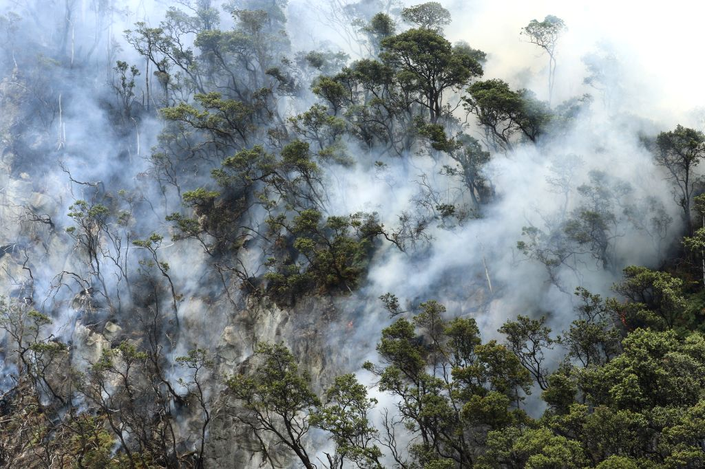 WEST JAVA, Oct. 8, 2019 - Forest fire is seen at Mount Patuha, West Java, Indonesia, Oct. 8, 2019. According to the West Java Regional Disaster Management Agency (BPBD), the area of land fires that ...