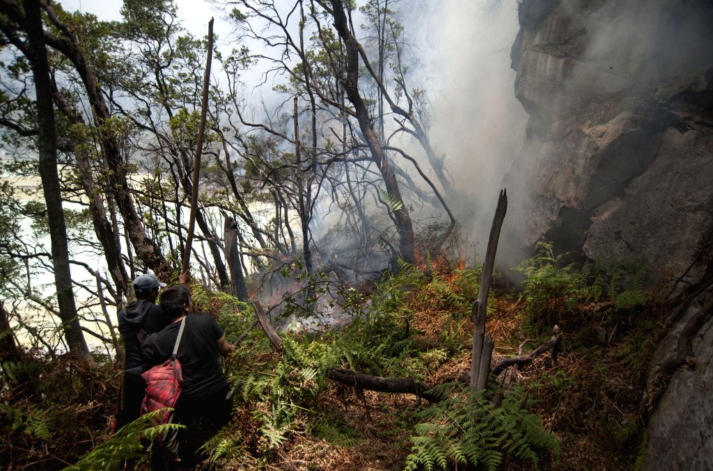 WEST JAVA, Oct. 8, 2019 - Volunteers try to extinguish forest fire at Mount Patuha, West Java, Indonesia, Oct. 8, 2019. According to the West Java Regional Disaster Management Agency (BPBD), the area ...