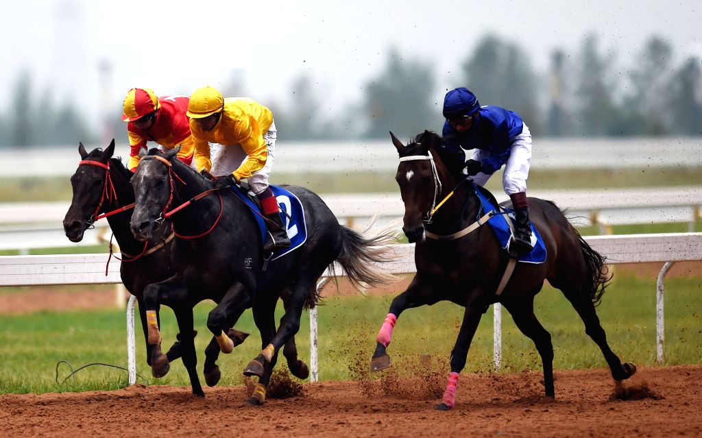 With the COVID-19 induced lockdown stalling horse races since March 25, the Karnataka government is in favour of allowing punters betting on their favourite stallions online, a top official said on Saturday. (File Photo: Xinhua/Lin Yiguang/IANS)