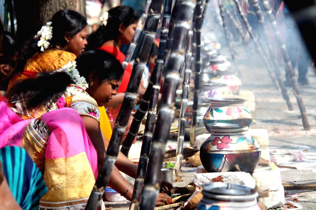 Women busy making sweet pongal on during a programme organised to celebrate Pongal in Bengaluru, on Jan 14, 2017.
