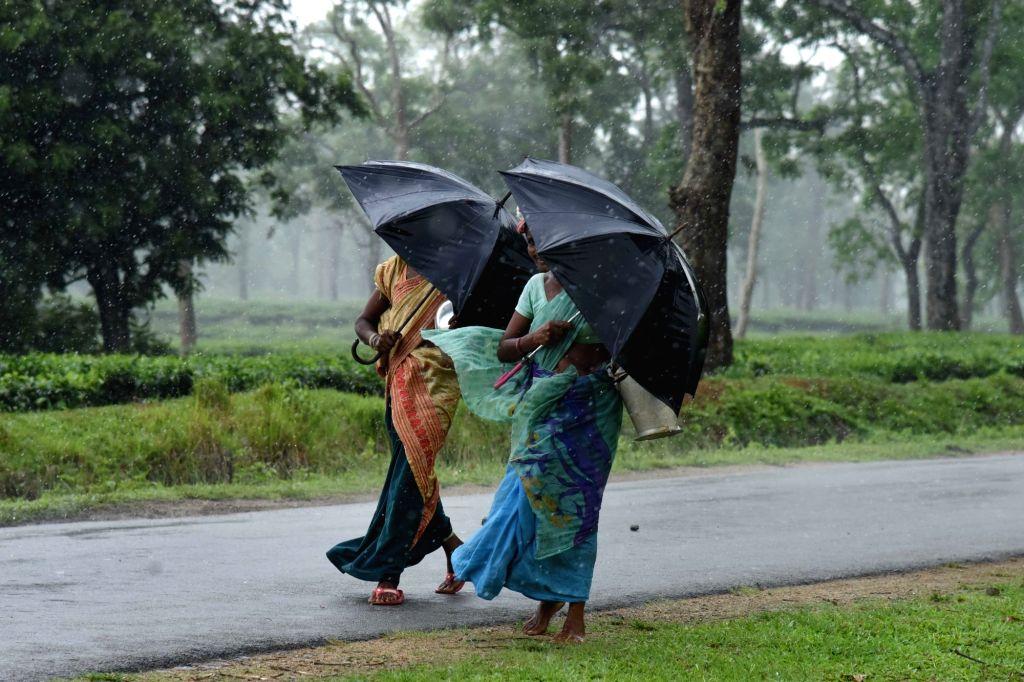 Women carry umbrellas as rains lash Nagaon of Assam on May 16, 2017.