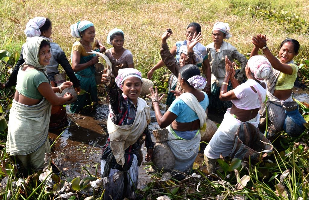 Women participate in community fishing - a  part of the Bhogali Bihu near Dalangghat in Morigaon district of Assam on Jan 13, 2017.