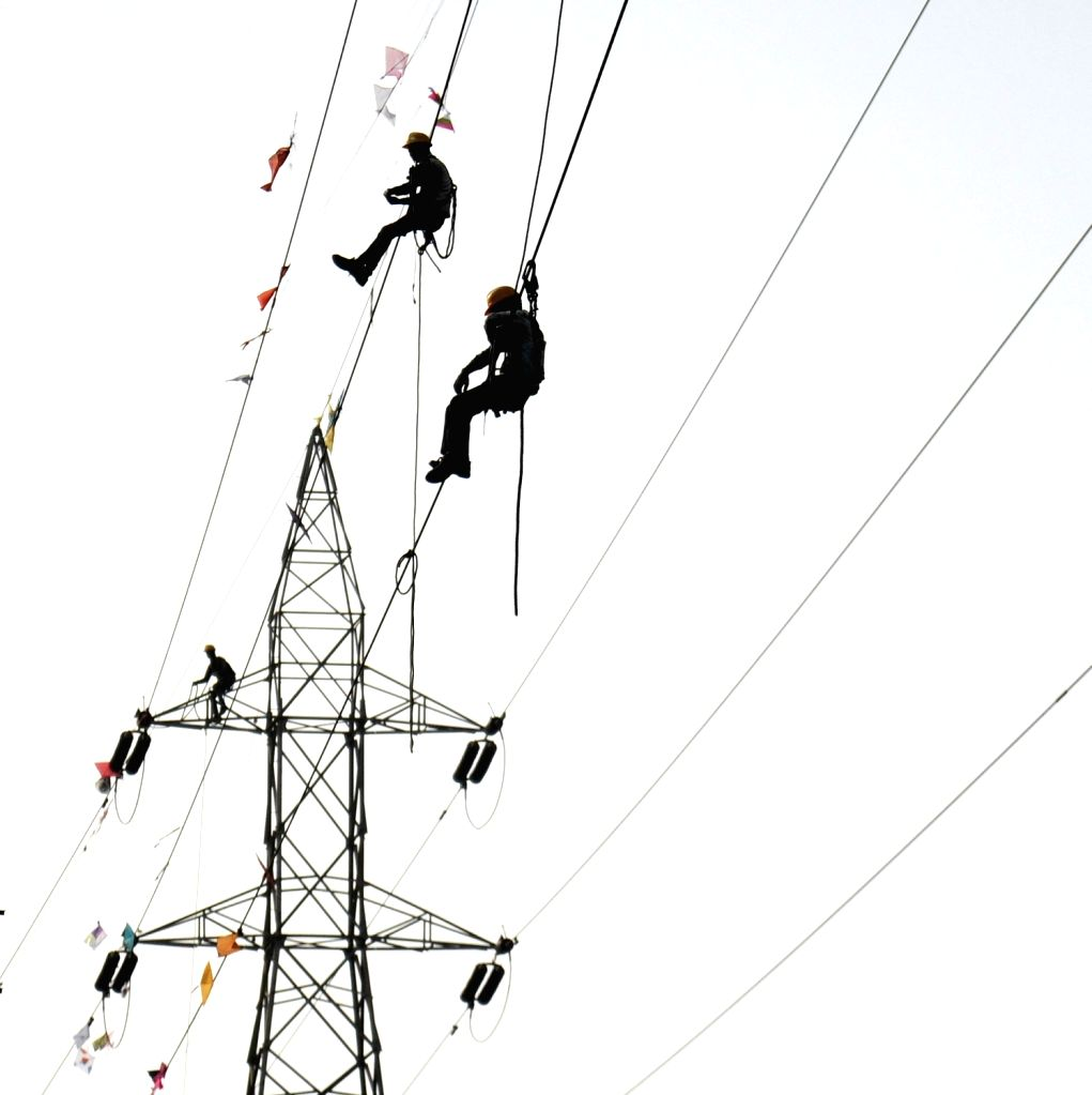 Workers remove kites stuck in high tension overhead wire after Makar Sankranti in Ahmedabad, on Jan 17, 2016.