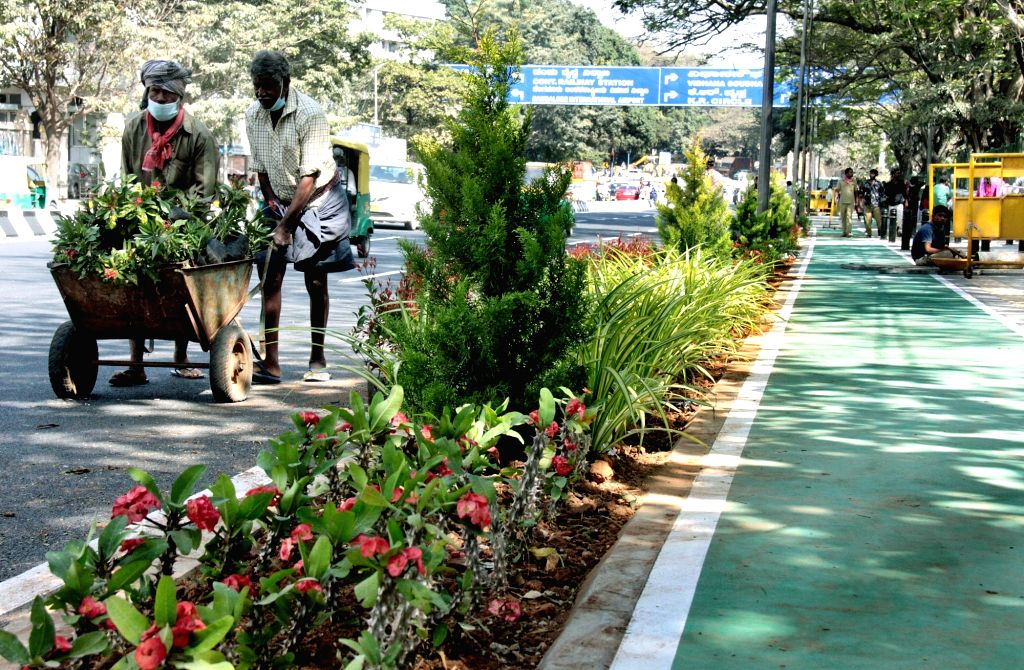 Workers saplings plants on roadside footpath at Race Course road, in Bengaluru on Monday 25th January 2021