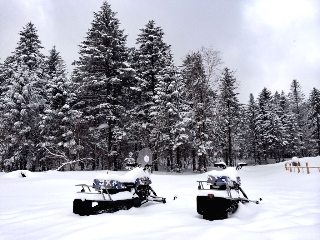 Photo taken on March 17, 2015 shows the snow scenery at the Xianfeng Mountain National Park at the border of Helong City and Antu County in Yanbian Korea ...