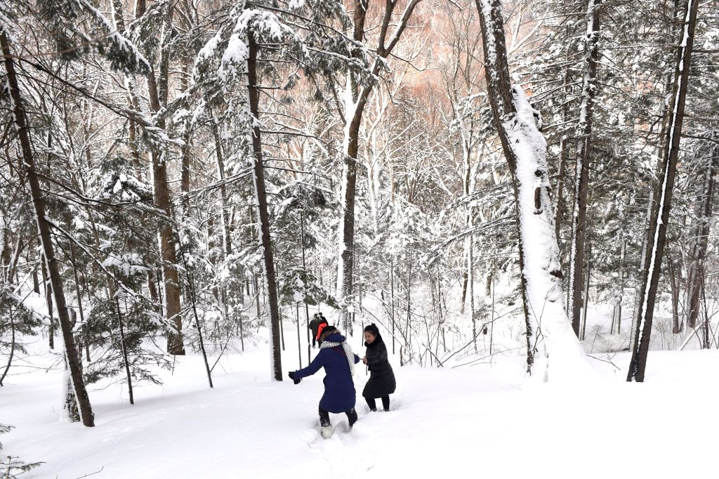 Tourists enjoy the snow scenery at the Xianfeng Mountain National Park at the border of Helong City and Antu County in Yanbian Korea Autonomous Prefecture, ...