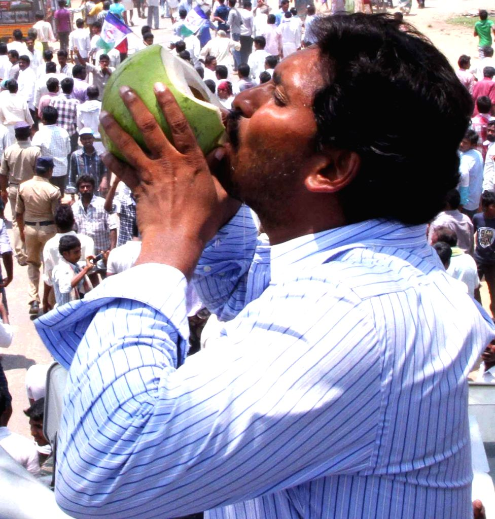 YSR Congress president Y.S. Jagan Mohan Reddy haves coconut water during an election campaign in Guntur district of Andhra Pradesh on April 22, 2014.