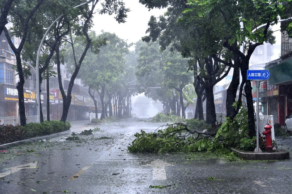 ZHUHAI, Sept. 16, 2018 - Broken branches are seen on a road in Zhuhai, south China's Guangdong Province, Sept. 16, 2018. According to China's National Meteorological Center, Mangkhut is expected to ...