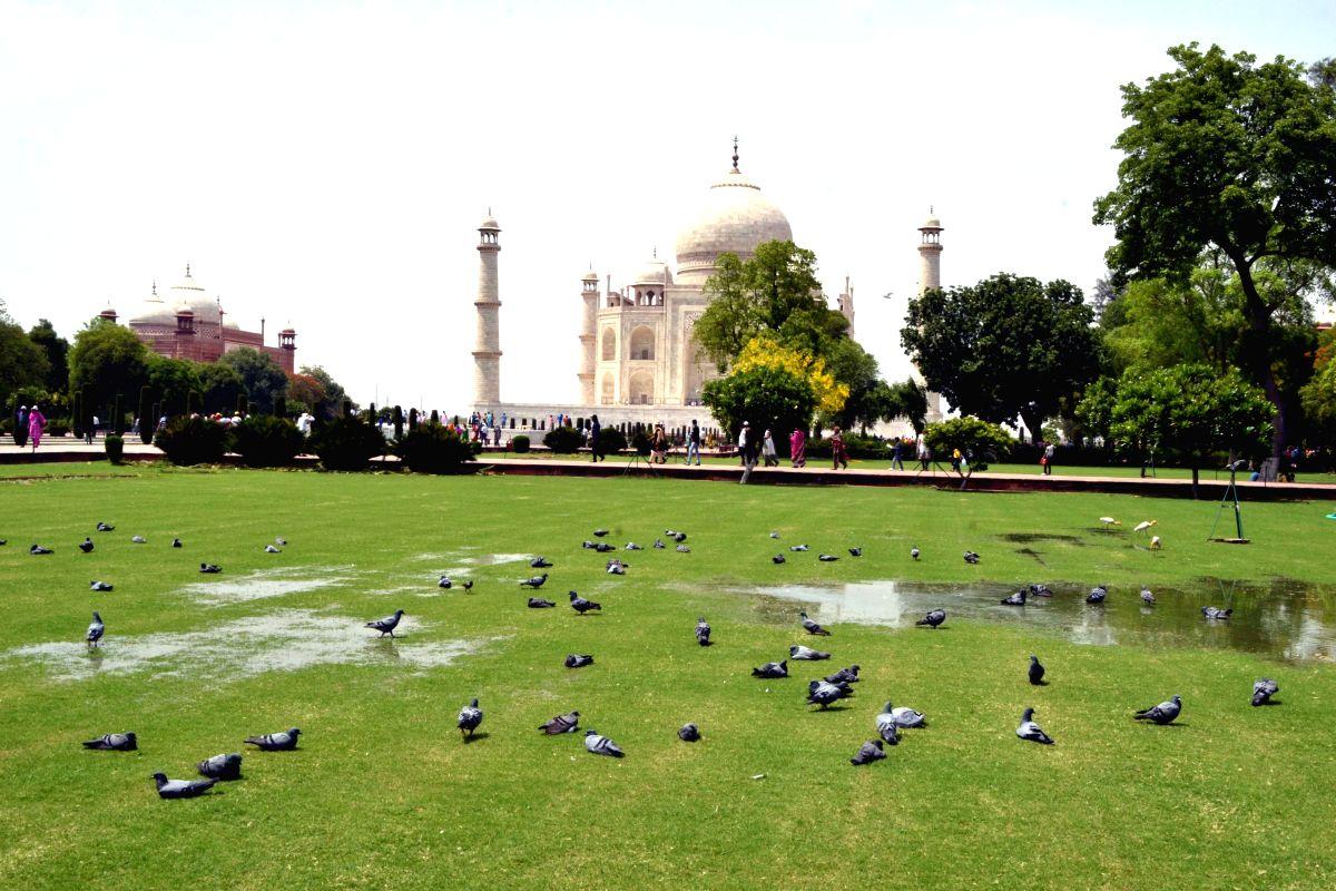 A peaceful evening at Taj