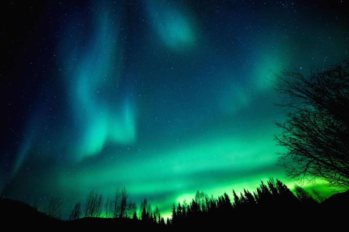 The Aurora Borealis or Northern Lights illuminate the night sky over Chena River State Recreation Area near Fairbanks