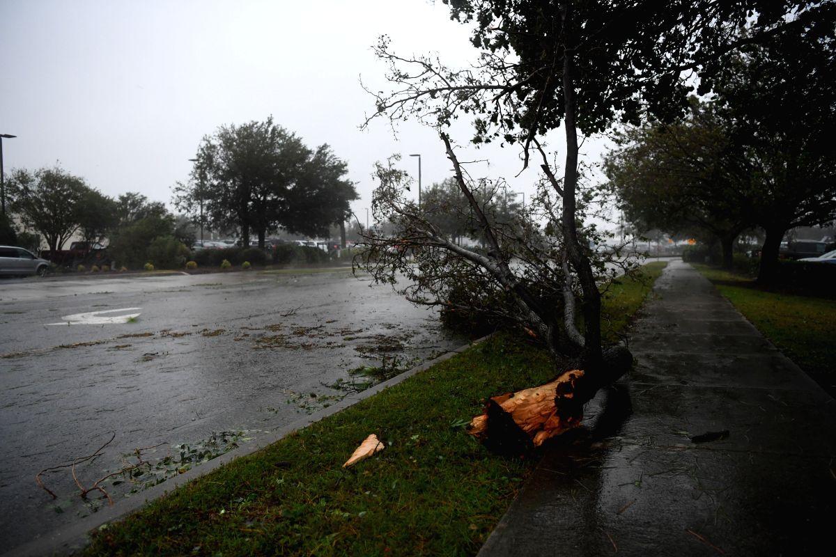 Around 2,500 missing after Hurricane Dorian. (Xinhua/Liu Jie/IANS)