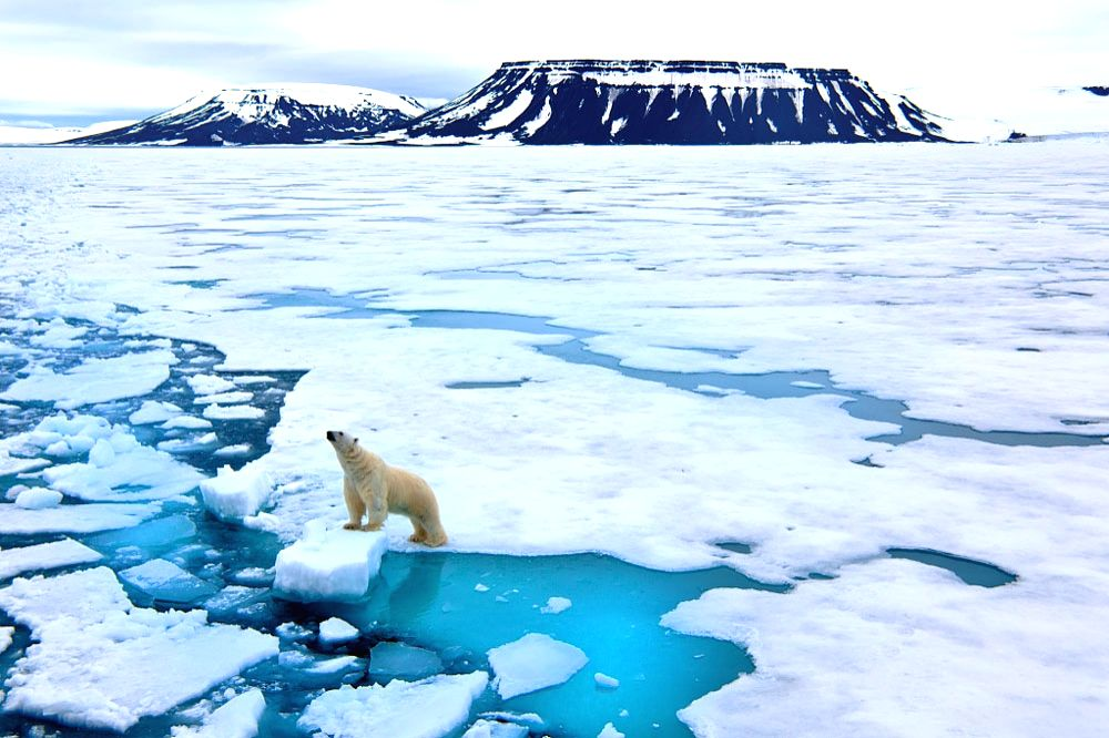 beijing : All countries will have to bear the responsibility for the settlement of climate change.