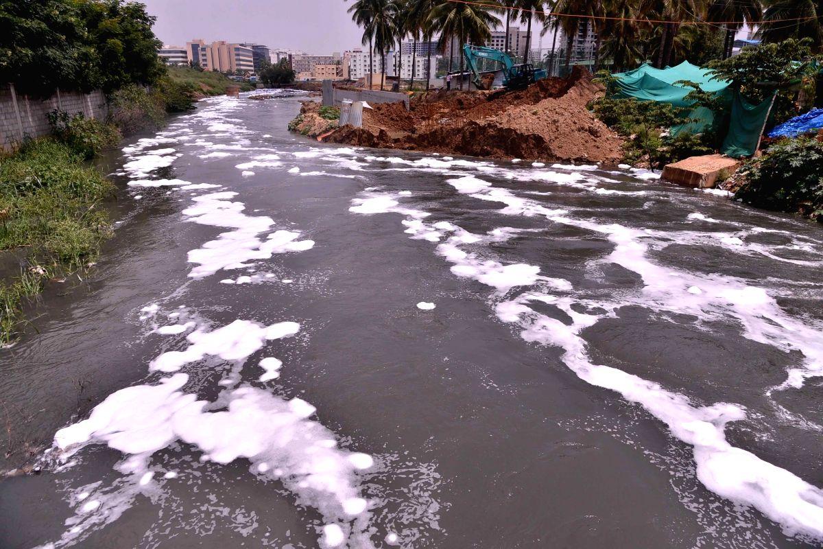 Bellandur Lake in Bengaluru. (File Photo: IANS)