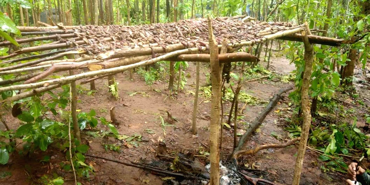 Bhubaneswar: Four Maoist camps busted in Odisha .