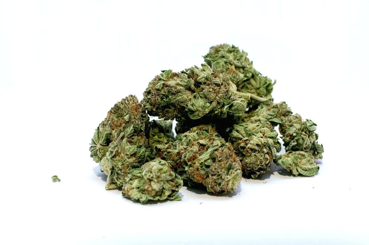 Does smoking marijuana affect your sperm count.