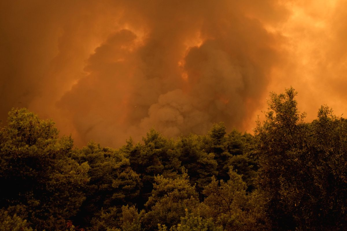 EVIA ISLAND, Aug. 13, 2019 (Xinhua) -- Flames and smokes rise as a result of a wildfire near Makrymalli village on Evia island, Greece,  Aug. 13, 2019. Greek fire fighters were battling the largest wildfires of this summer raging in two major fronts