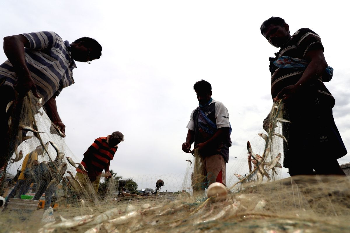Ex-Union Minister seeks Centre's intervention in Sri Lankan Navy attack on TN fishermen