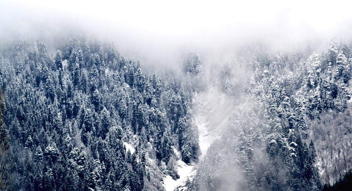 Gulmarg of Jammu and Kashmir