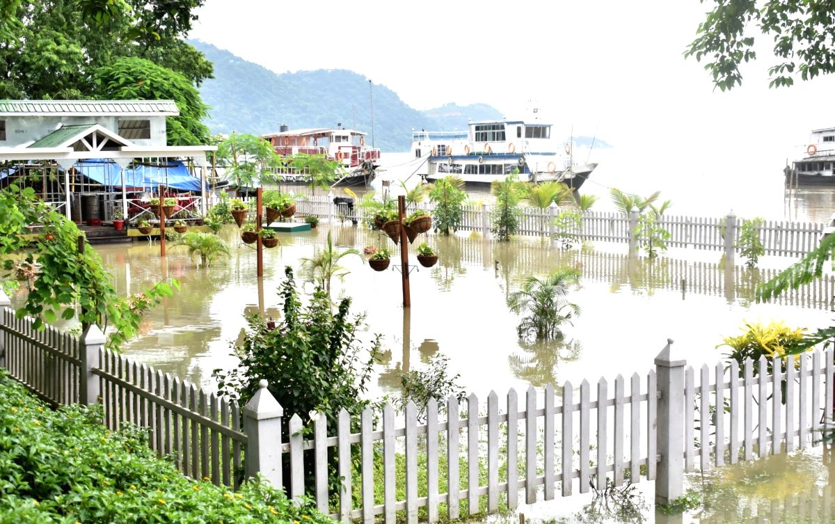 Assam's Kaziranga park flooded, 51 animals killed, 102 rescued (Representational image)
