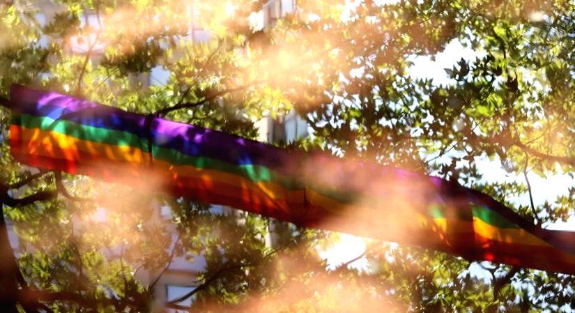 Indian millennials bat for legalising gay marriage.