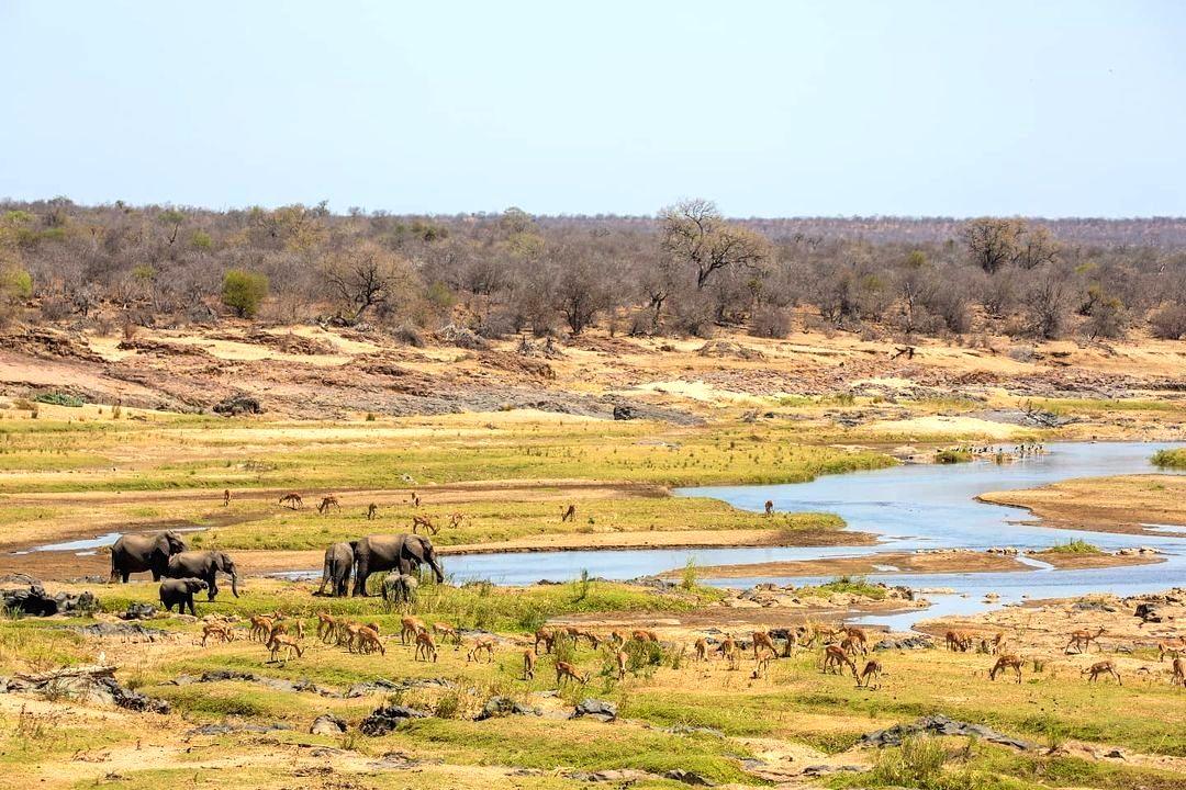 Kruger National park in South Africa.(photo:Instagram)