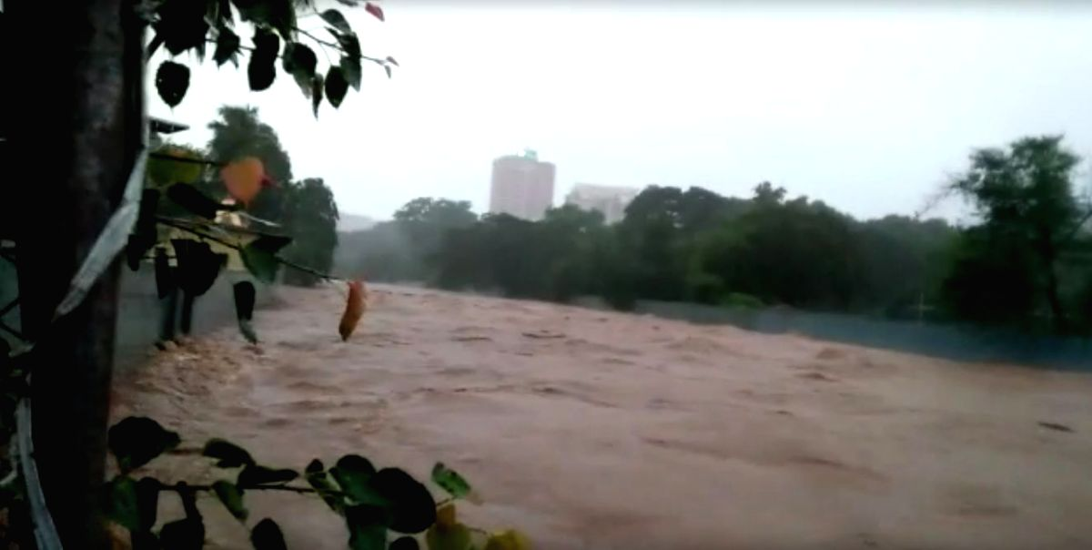 Mumbai: A view of the Mithi River at Sanjay Gandhi National Park, Borivali flooded above the danger mark on Aug 4, 2020. At least one person was killed in Thane as heavy rain clobbered Mumbai since Monday night with the state government declaring a h