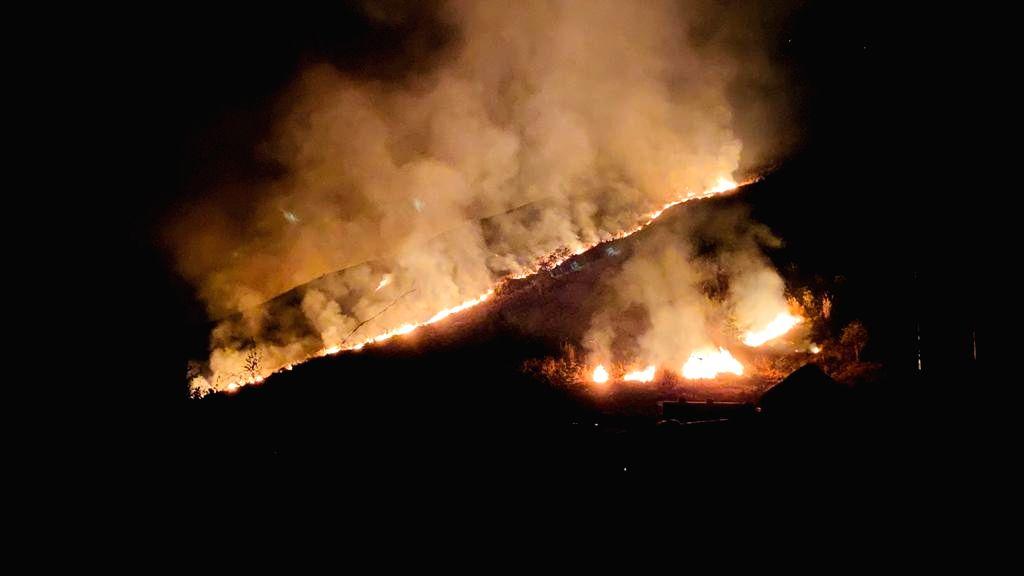 Odisha sends team to control fire in Similipal