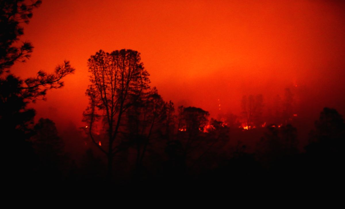 PARADISE, Nov. 14, 2018 (Xinhua) -- Wildfire burns in Oroville, California, the United States, on Nov. 13, 2018. The death toll from the raging Camp Fire in the U.S. state of California has increased to 48 as rescuers continue to search for missing r