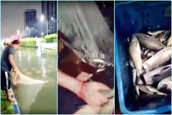People in Kolkata go fishing on waterlogged streets!