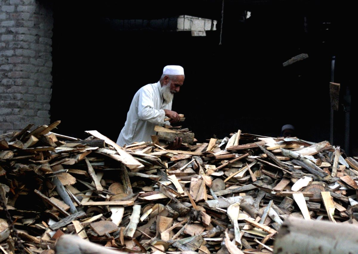 PESHAWAR, Nov. 12, 2017 (Xinhua) -- A man carries firewood to be used as fuel to cook food due to shortage of natural gas in northwest Pakistan's Peshawar on Nov. 12, 2017. Firewood demand increased in Pakistan due to less availability of natural gas