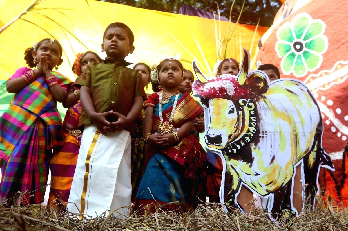 Pongal celebrations 2020