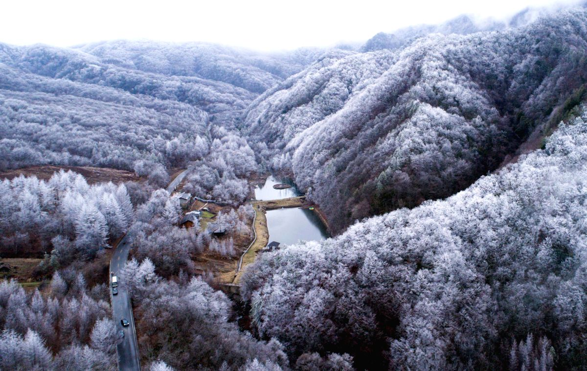 Snow-covered forest at SHENNONGJIA