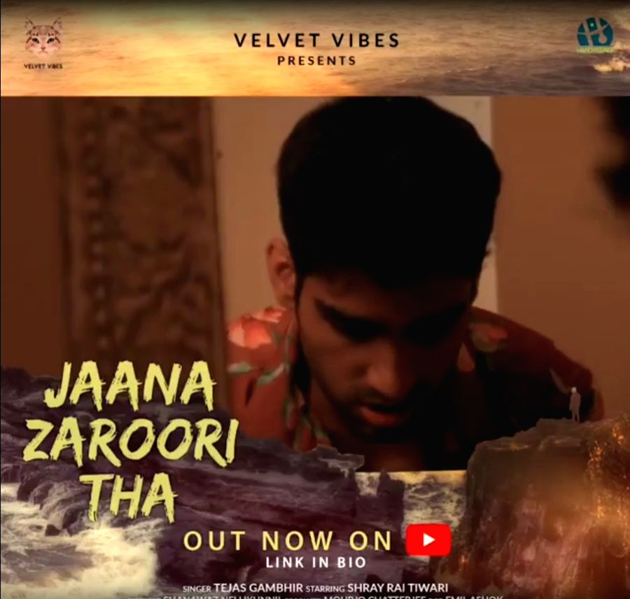 Tejas Gambhir's new song 'Jaana Zaroori tha' raises mental health awareness.