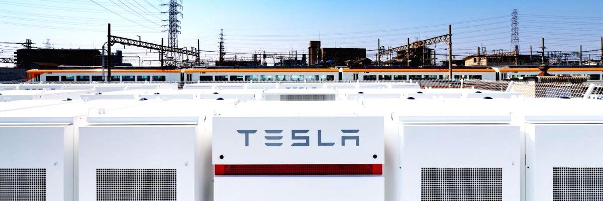 Tesla's Model Y built in China goes on sale. (Photo Courtesy: Twitter/@Tesla)