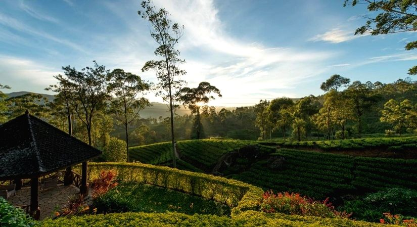 The island country has put renewed efforts to revive its tourism industry. And why not? After all, the country has the best of both oceans and mountains to offer. From the quaint, charming British-era tea estates in the North to the uber sporty, pano