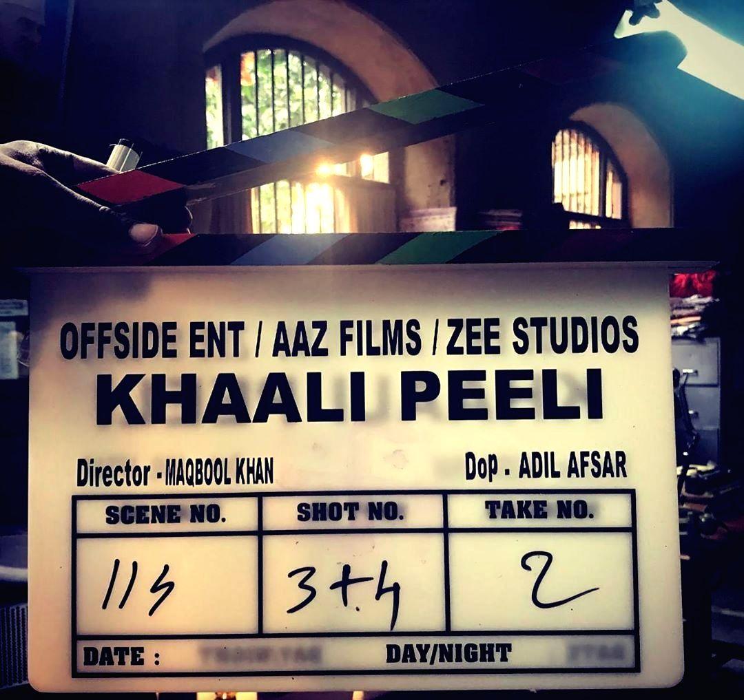 "The shooting for first-time director Maqbool Khan's ""Khaali Peeli"" starring Ishaan Khatter and Ananya Panday has begun."